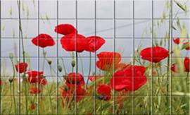 Mural cerámico campo con amapolas visto desde muy cerca del suelo donde el verde de los tallos y el rojo de las flores sobre un cielo azul muy clarito producen una tranquilidad a la vista